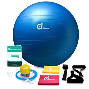 2000lbs-Anti-Burst-Exercise-Stability-Ball-with-2-Sets-Resistance-Loop-BandsPack-w-PumpDoor-Anchor-and-Handles-for-YogoFitnessRehabilitation-Workout-0